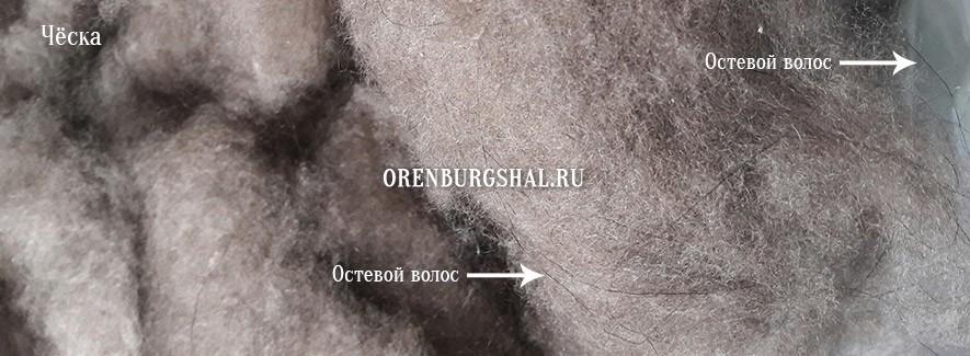 Orenburg fluff
