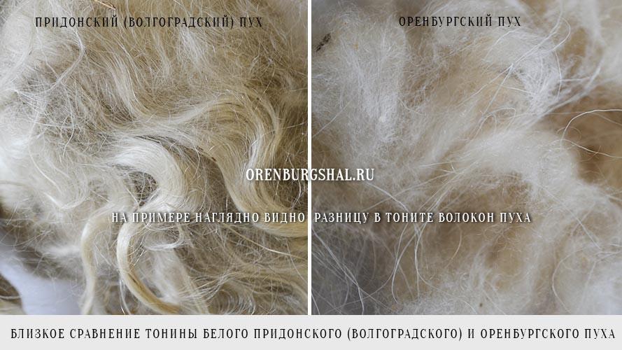 Тонина Оренбургского и придонского пуха