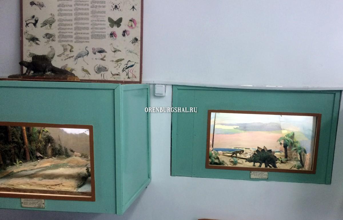 музей саракташ