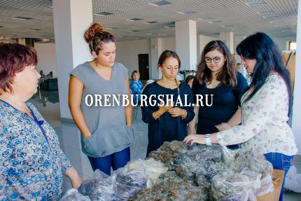 сорта оренбургского пуха