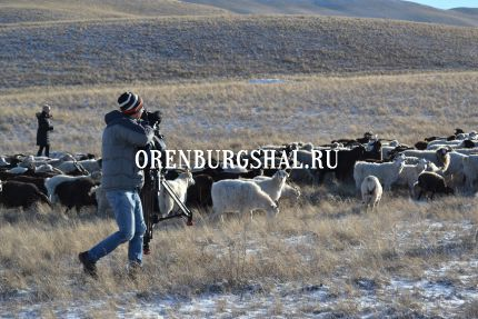 sky news оренбург